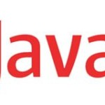 Image for The Java security solution