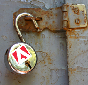 Adobe security leak