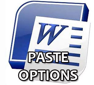 Paste Options box