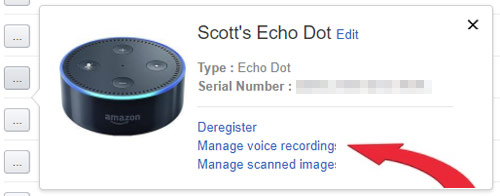 Alexa delete recordings