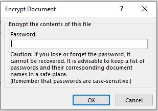 Word password