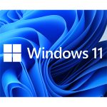 Image for What to do about Windows 11